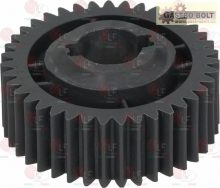 PLASTIC GEAR ø 101 mm 39 TEETH